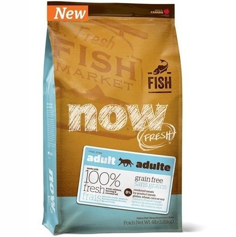 Now! Fresh ADULT CAT Fish